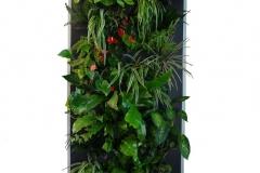 Cascade-végétale-hydro.-212-x-76