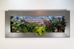 Cadre Végétal à led 110x47cm