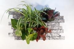 Cadre végétal 60x30x5