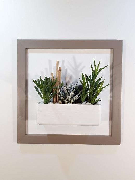 Cadre 44x44 brun succulente