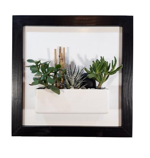 Cadre 44x44 noir succulente galerie