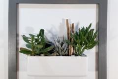 Cadre 44x44 gris succulente