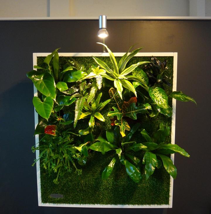 Cadre végétal blanc