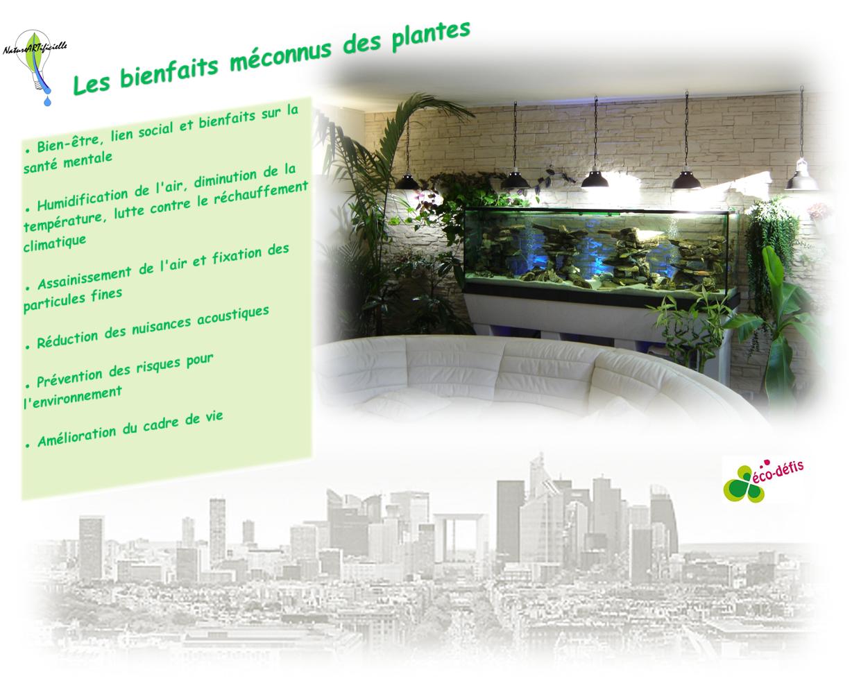 bienfaits-des-plantes-1