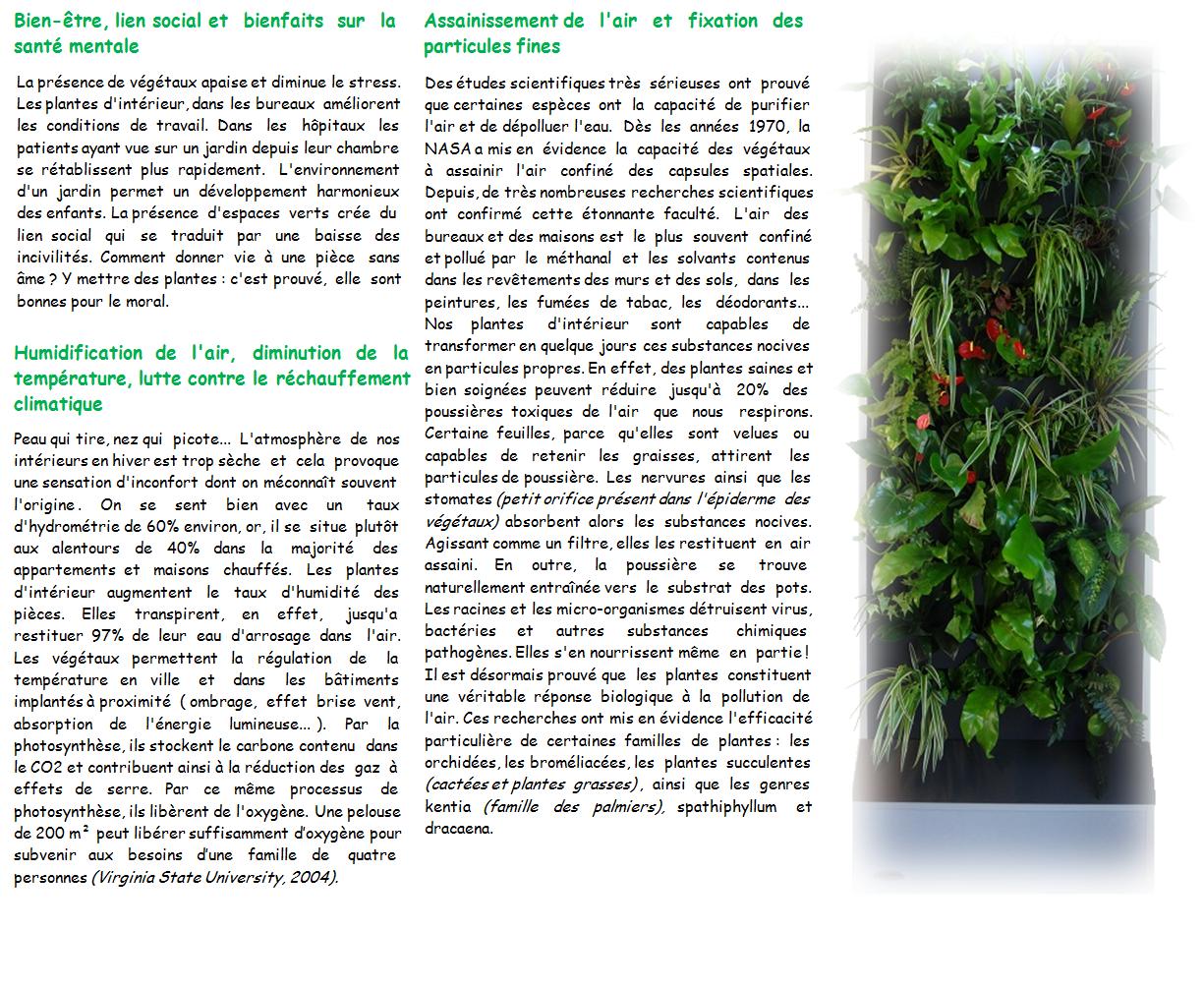 bienfaits-des-plantes-2